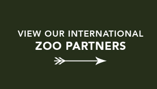 OCP International Zoo Partners