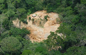 Elimination illegal mining on the okapi reserve.