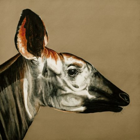 Okapi Print by McCracken